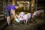 Justine Stromberger beim Schweine füttern.jpg