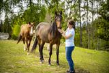 Auch Pferde und viele andere Tiere gehören zur Menagerie am Gipflerhof ©Wirlphoto