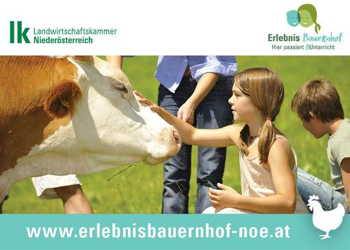 Erlebnis Bauernhof © LK NÖ