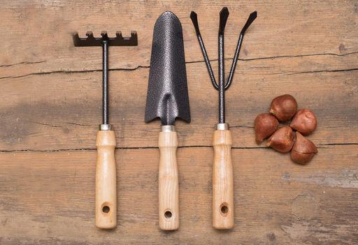 Gartenarbeit leicht gemacht © pixabay