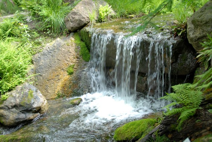 Grundwasser 2010 - 8-Stundenkurs © W. Paretta