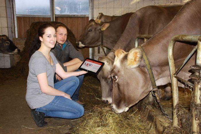 LKV Tirol Stall_Web © LKV Tirol