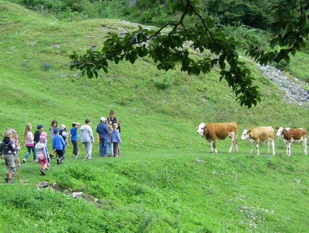 Almerlebnistag 075a © Karin Astner - Schule am Bauernhof Tirol