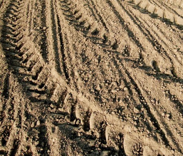 Landwirtschaft©Bundes-LFA © Bundes-LFA