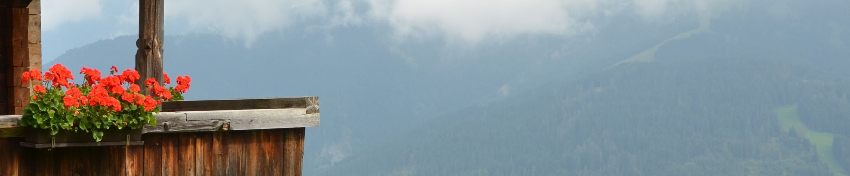 Header25 © Susanne Seisl - LFI Tirol