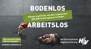 Banner Werbung Hagelversicherung Web ©Archiv