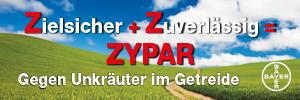 Banner Bayer - Jänner 2019 - Zypar © Bayer