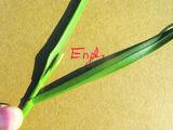 Das Englische Raygras zeigt seine grannenlosen Ährchen ab Anfang Mai. Am Foto sieht man auch die glänzende Blattunter- und die geriefte Blattoberseite ? zwei für die Raygräser typische Merkmale. ©Archiv
