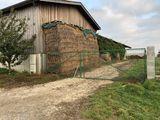 Tor mit festem Schotterboden ©Beratungsteam Schweinehaltung/LK Niederösterreich