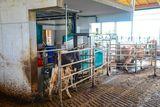 Spaltenboden am Warteplatz; Abweisbügel beim Eingang zum Roboter schützen die Kuh, ein verlängerter Ausgang nach dem Roboter verhindert einen Stau beim Ausgang. ©Josef Rechberger/LK Niederösterreich