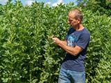 Beim Rundgang gibt es auch einen Einblick in die Feldfrüchte. ©Bio Austria