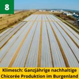 burgenland-isst-innovativ-2021-lk-burgenland (7).png