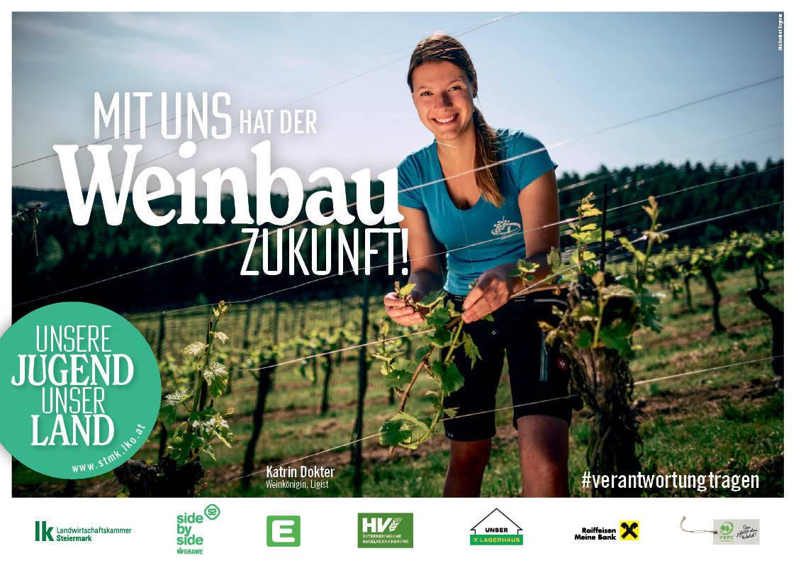 07_Weinbau ©Landwirtschaftskammer Steiermark
