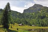 Steinkar Berg.png