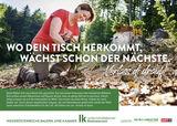 LKNOE Inserat 274x195mm Holz.jpg